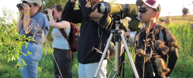 Birders in 3 of the 14 identity types are far more likely than the others to participate in local birding field trips. Photo by Jody Enck.